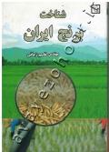شناخت برنج ایران