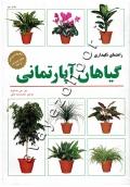 راهنمای نگهداری گیاهان آپارتمانی
