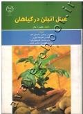 عمل اتیلن در گیاهان