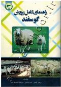 راهنمای کامل پرورش گوسفند
