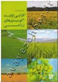 کارایی تولید اکوسیستم های زراعی