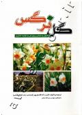 گل نرگس (اصول و مبانی پرورش و تولید تجاری)