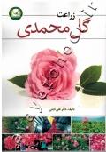 زراعت گل محمدی