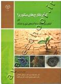 کاربرد قارچ های میکوریزا در کشاورزی پایدار و خاک های شور و خشک