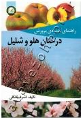 راهنمای کاربردی پرورش درختان هلو و شلیل