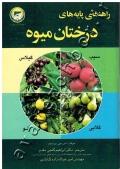 راهنمای پایه های درختانه میوه