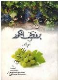 پرورش انگور