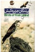 پرندگان جزیره کیش