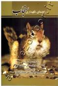 راهنمای نگهداری سنجاب