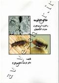 خاک دیاتومه و کاربرد آن در کنترل حشرات  آفت انباری