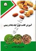 آموزش کاشت نوین گیاه بادام زمینی