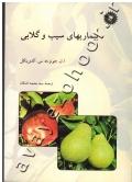بیماری های سیب و گلابی