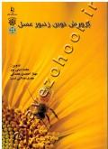 پرورش نوین زنبورعسل