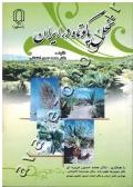نخل پاکوتاه در ایران