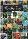 پرورش ، نگهداری و تکثیر گیاهان آپارتمانی