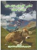 اطلس گاوهای نژادهای ایران و جهان