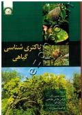 باکتری شناسی گیاهی