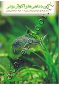 گربه ماهی های آکواریومی ( راهنمای کامل نگهداری و تکثیر بیش از 100 گونه گربه ماهی زینتی )