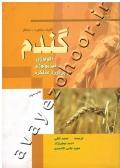 گندم ( اکولوژی، فیزیولوژی و برآورد عملکرد )